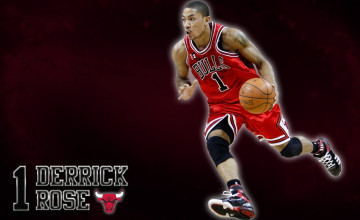 Chicago Bulls Derrick Rose Wallpaper