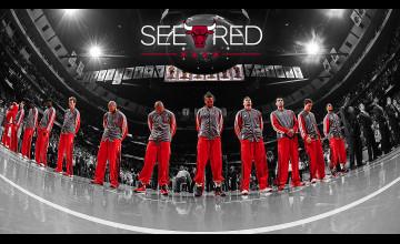 Chicago Bulls Wallpaper 2015