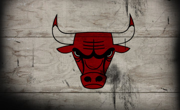 Chicago Bulls Wallpaper Hd