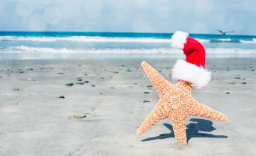 Christmas at the Beach Wallpaper