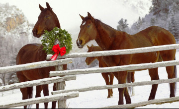 Christmas Horses Wallpaper for Computer