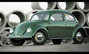 Classic Beetle Wallpaper