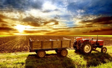 Country Farmhouse Wallpaper