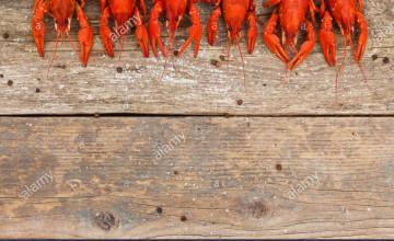Crawfish Background