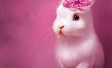 Cute Bunnies Wallpaper