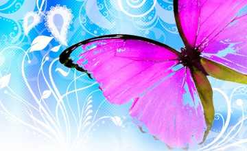 Cute Butterfly Desktop Wallpapers
