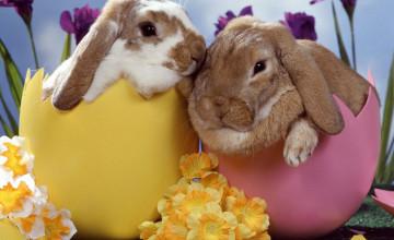 Cute Easter Wallpaper