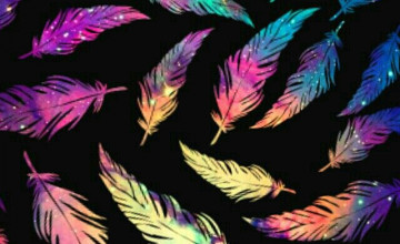 Cute Feather Wallpaper