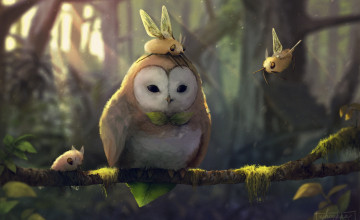 Cutiefly HD Wallpapers