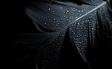 Dark Images Wallpaper
