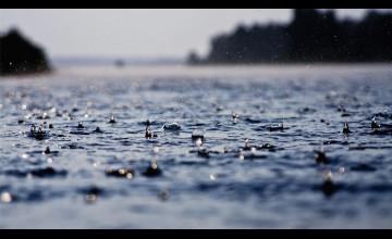Daytime Raining Wallpaper