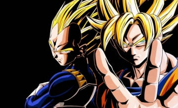 DBZ Wallpaper Goku and Vegeta