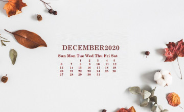 December 2020 Wallpapers