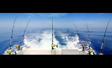 Deep Sea Fishing Wallpaper
