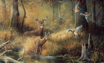 Deer Wallpaper for Walls
