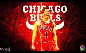 Derek Rose Playoff Wallpaper
