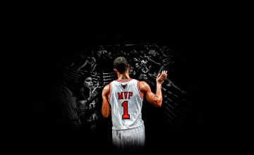 Derrick Rose Mvp Wallpaper