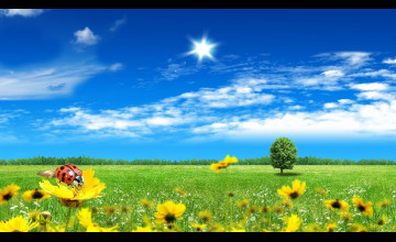 Desktop Wallpaper Beautiful Spring Scenes