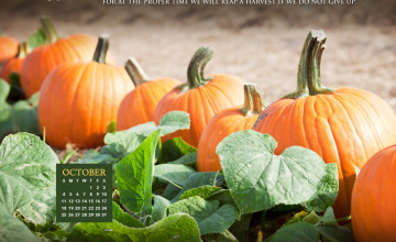 Desktop Wallpaper Calendars October 2015