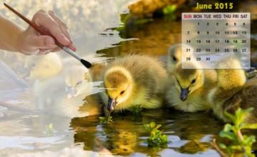 Desktop Wallpapers Calendar June 2015