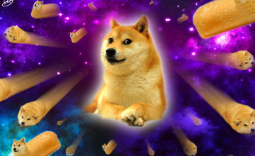 Doge Wallpaper