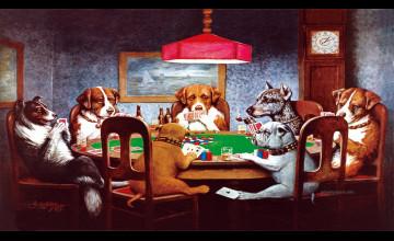 Dogs Playing Poker Wallpaper