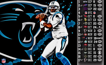 Download Panthers Football Wallpaper