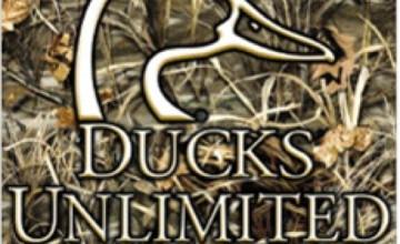Ducks Unlimited Wallpaper