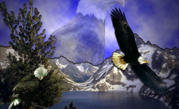 Eagle Screensavers and Wallpaper