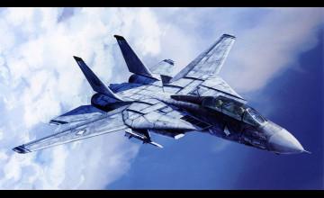 F 14 Tomcat Wallpaper Aircraft