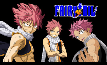 Fairy Tail Natsu Wallpaper