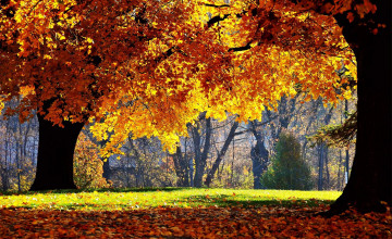 Fall Desktop Backgrounds Free
