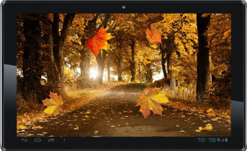 Fall Live Wallpaper for Desktop