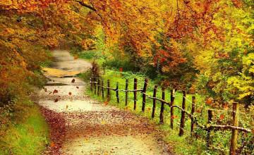 Fall Scenery Wallpaper Desktop