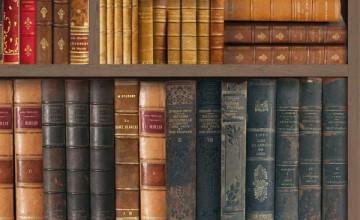 Faux Library Books Wallpaper