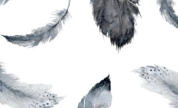 Feathers iPhone Wallpaper
