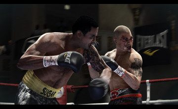 Fight Night Champion Wallpaper