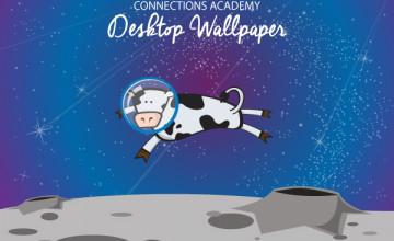 Find Desktop Wallpaper File