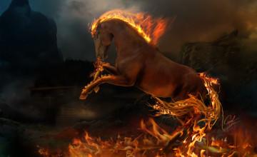 Fire Horse Wallpaper HD