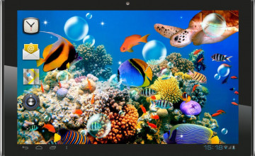 Fish Tank Wallpaper Live