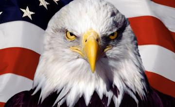 Flag and Eagle Computer Wallpaper