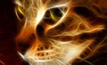 Flaming Cat Wallpaper