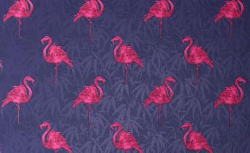 Flamingo Wallpaper UK