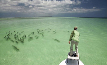 Flats Fishing Wallpaper