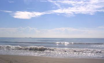Florida Beach Screensavers and Wallpaper