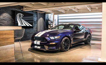 Ford Mustang Shelby GT350 Wallpapers