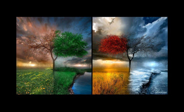 Four Seasons Wallpaper