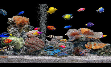 Free 3D Fish Tank Wallpaper