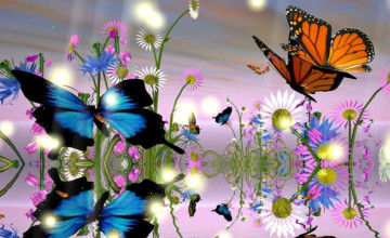 Free Butterfly Screensavers and Wallpapers