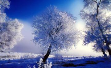 Free Desktop Backgrounds Winter